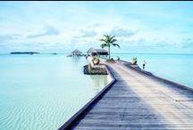 Tropical ✨