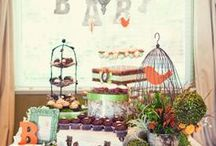Baby Olivia's Shower / planning a baby Bird-ick party for Olivia and Lani