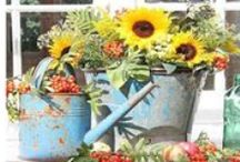 Garden Watering Cans / Rustic watering cans add whimsical surprises to garden decor.