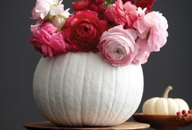 Fall Decor / by Amanda Finkenbine