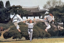 ☯ Taekwon-Do / Sadly, Pinterest lacks TKD pins. I'm going to have to remedy that... / by first principles ⋆
