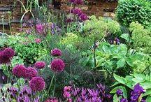 puutarhanäkymiä