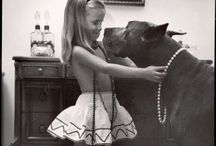 "Great Danes.. Gentle giants! / Can't wait to have my own ""Gentle Giant"" Great Dane!!!"