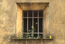Doors & Windows / I love doors and windows, I always wonder what's behind them