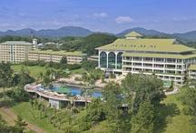 Favorite Hotels / by Gamboa Rainforest Resort Panama