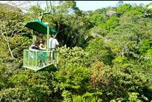 Tours y Actividades / by Gamboa Rainforest Resort Panama