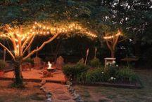 Gardening, yard and outdoor