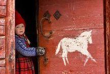 Folk art / Exuberant expressions / by Donatella Crippa