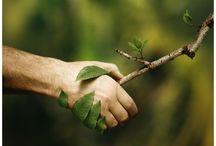 Exister en respectant la terre / et ceux qui y vivent.