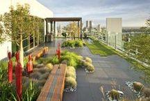 INSPIRATION_Roof Gardens