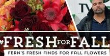 """Fresh Flower Finds For Fall / Jet Fresh Flower Distributors in Miami presents """"Fresh Flower Finds For Fall."""" See all floral possibilities for your fall arrangements."""