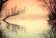 Photography Landscape