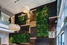 INSPIRATIE {green office} / Inspiratie nodig op het gebied van groenvoorziening? Dan is dit bord wat voor jou! Een groen kantoor kan de perceptie van werknemers over de luchtkwaliteit, concentratie en tevredenheid met de werkplek beïnvloeden. Een kantoor met planten maakt een werknemer gelukkiger en productiever dan een kale ruimte. Behoefte aan een adviserend gesprek of een brainstorm sessie op een inspirerende locatie? www.gz.nl/contact