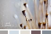 Colour/ moodboard