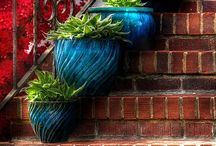 Container Gardening / by jan s