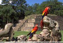 HONDURAS (copan ruinas)