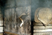 sauna and finnish nature