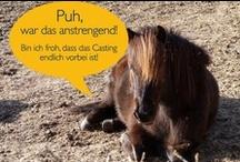 Online Marketing / Jetzt noch mehr Kampagnen pur im Fischer`s Archiv!