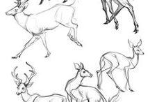 A / sketch , tutorial etc..