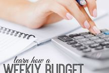 Practical Finance Tips to Save Money / Money saving tips for everyone - stay at home moms, getting out of debt, getting on a budget, saving money for baby or saving money for a vacation to Disney. Learn finance tip's from the pros.