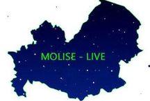 Molise LIVE / ARTIGAINATO - COMMERCIO - TURISMO  in Molise