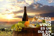 El vino es divertido / La #Divertida forma de ver el #Vino y #Disfrutar de un poco más!
