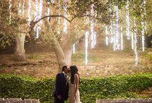 Hochzeit / Alles zum Thema Hochzeit und heiraten. Inspirationen für das Hochzeitsgeschenk, die Hochzeitstorte, das Hochzeitskleid, und Hochzeitsdeko. Hier werden mit Glitzer und Romantik Mädchen Träume wahr.