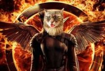 Hunger Games Cats