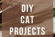 Cat DIY / All the cat DIY's that your cat will love! Cat DIY projects, DIY cat furniture, DIY scratching post, DIY indoor cat garden and DIY cat toys!