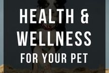 Pet Health Remedies / Need to know pet health remedies. Essential oils for cats and dogs, first aid for pets, DIY paw balm and dog ear cleaner, dog CPR and DIY skin and coat soothers and fresheners.