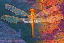 Art | Bug Life / Wall art featuring bugs by Imagekind artists.
