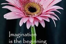 Creativity ✨ / Creativity tips, inspiration & diys.