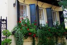 Pinspiring Window Boxes / Add color to your home and boost your curb appeal with an inspiring window box.