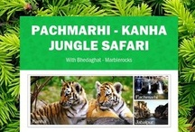 Pachmarhi Kanha Jungle Safari With Bhedaghat Marblerocks / Pachmarhi is truly a Hill Resort. Kanha is a well-known national park of India. and Bhedaghat possess stunning beauty of marbles on the river bank of Narmada.