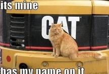 funny pics / by Caitlin Duke