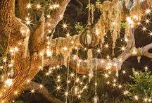 Fairy light / ...
