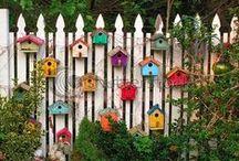 Birdhouse / ...