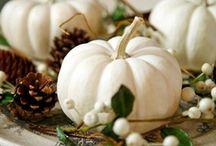 ~Beautiful Autumn~ / Autumn Delights - Beautiful Autumn Decor / by Inger Harding