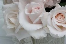 ~Pale Pink~ / Color me pale pink - everything pale pink.