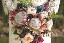 Fall Weddings / Lots of ideas for planning your fall wedding! Fall wedding colors, fall brides, fall bridesmaids dresses, fall bridal flowers and bouquets, fall groom suits, and much more!
