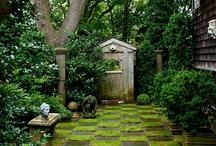 Garden, Outdoors  / by Marjorie Olesen