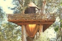 Treehouses & Treehouse Hotels