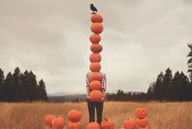 Fall things / by Livvy Hiers