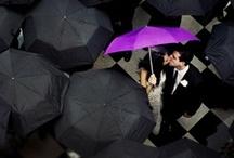 my wedding ideas / by Rachael Clepper