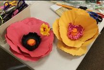 Projects from Adult Programs