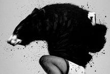 Furry friend / by Angel Valencia
