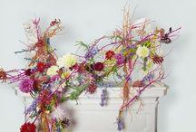 bloemen, flowers, fleurs, blumen, fiori, flores, цветочный / bloemen, flowers, fleurs, blumen, fiori, flores, цветочный
