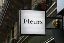 fleuristes a paris  |  florists in paris / Boutique des fleurs a Paris | Flower shop in Paris | Bloemenwinkel in Parijs | Blumenladen in Paris