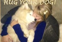 Inspirational Dog Quotes / Inspiration from our furry friends
