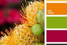 Color Inspiration / Beautiful color palettes to inspire your crochet, knit, or other fiber projects